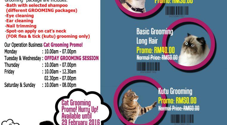 Cat Grooming Promo!