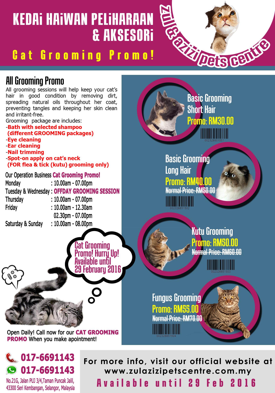 ZAPC Cat Grooming Promo